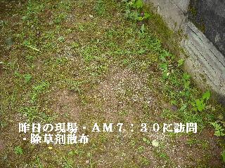 f0031037_2093838.jpg