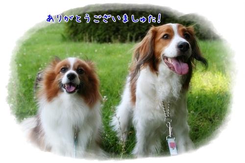 d0013149_23174236.jpg