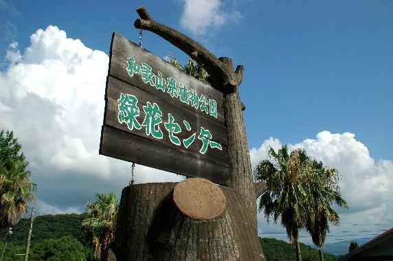 和歌山県植物公園緑花センター _b0093754_0101437.jpg