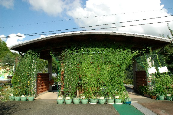 和歌山県植物公園緑花センター _b0093754_0102251.jpg