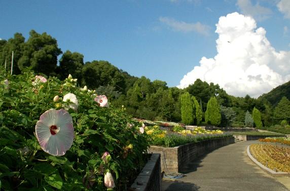 和歌山県植物公園緑花センター _b0093754_0103069.jpg