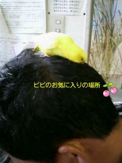 f0057565_18371395.jpg
