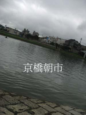 b0132385_1521493.jpg
