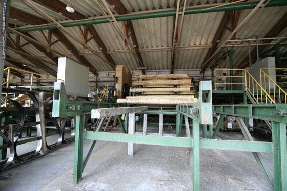 緑の森 木材工場(重川材木店) 2_e0054299_23414348.jpg