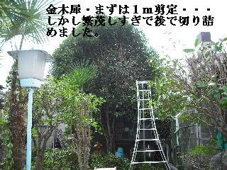 f0031037_2125427.jpg