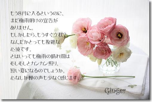 b0066947_659246.jpg