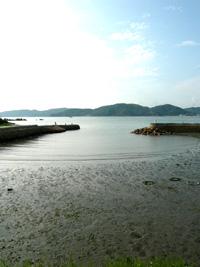 海へ〜【犬島時間】2009_a0017350_8175748.jpg