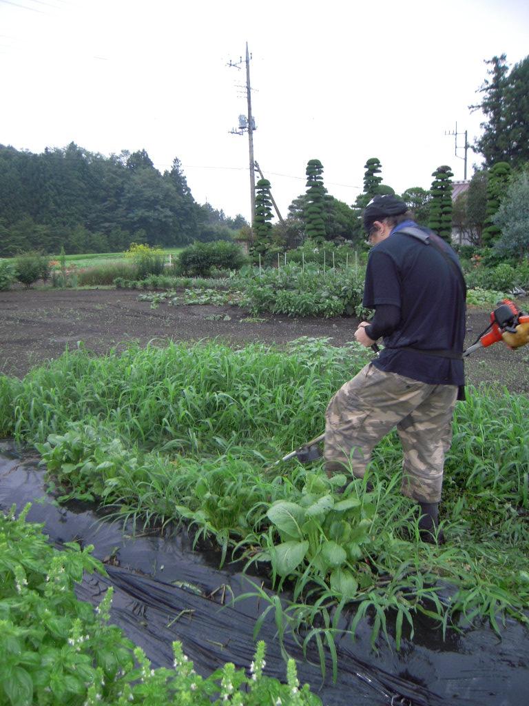 農業のお時間。_b0179052_3482111.jpg