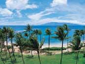 ハワイ・アーカイブス_f0183153_2053297.jpg