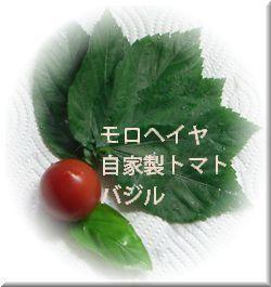 c0139473_23444497.jpg