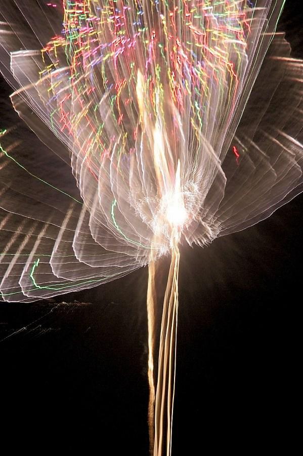 サギのような長岡の花火
