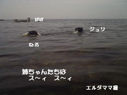 b0101991_21434276.jpg