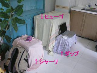 c0175014_00961.jpg