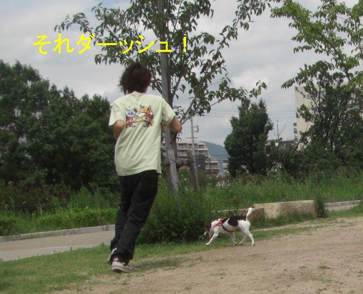 f0053952_14135260.jpg