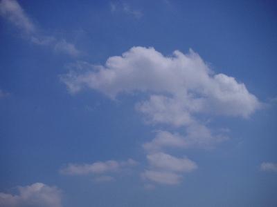 8/6 am8:15 ~ Hirosima_f0146802_8192597.jpg