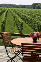 ロングアイランドのワイナリーで、美味しいワイン・テイスティング_b0007805_12284482.jpg