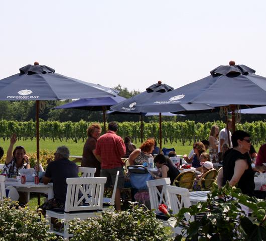 ロングアイランドのワイナリーで、美味しいワイン・テイスティング_b0007805_12322028.jpg