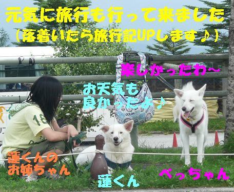 f0121712_941392.jpg