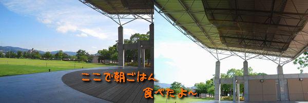f0203612_21234262.jpg