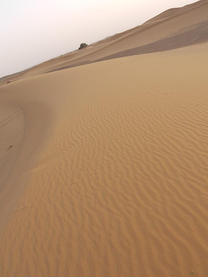 モロッコ2_a0042928_23553655.jpg