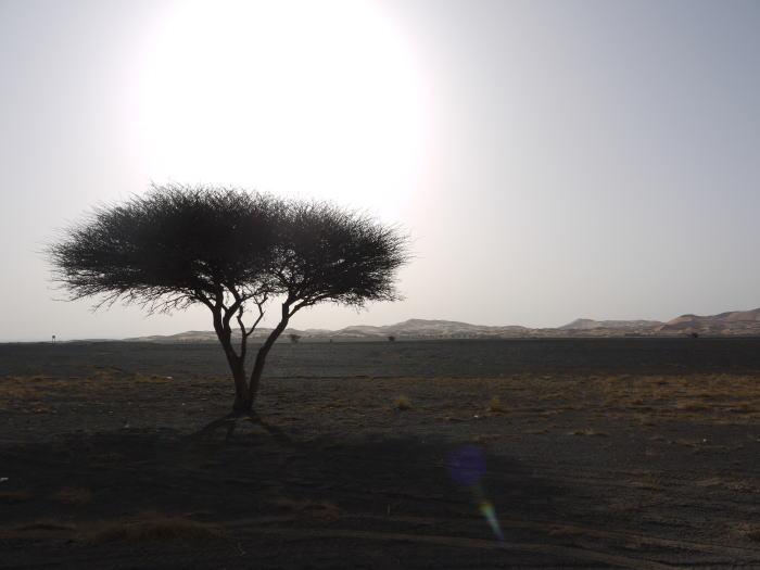 モロッコ2_a0042928_23592170.jpg