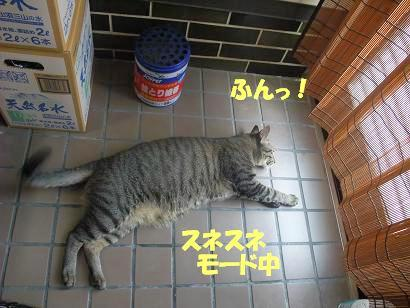 b0118850_10311317.jpg