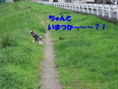 b0143879_14532657.jpg