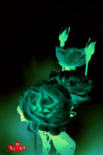 黒い。_b0133890_10583939.jpg