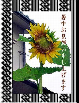 c0015714_11512666.jpg