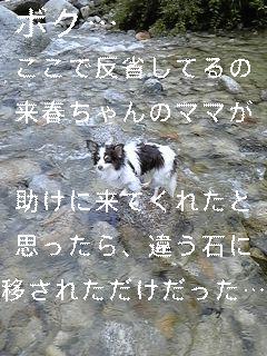 夏は川遊びだ!_f0148927_17175529.jpg