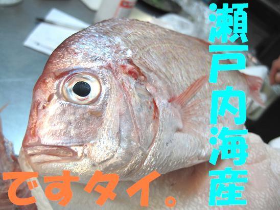 f0196131_1572510.jpg