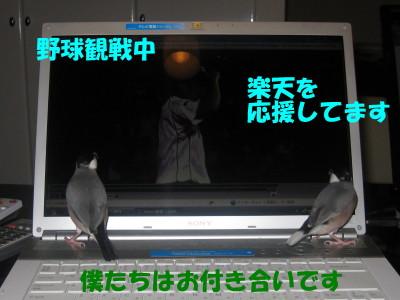 b0158061_20463285.jpg
