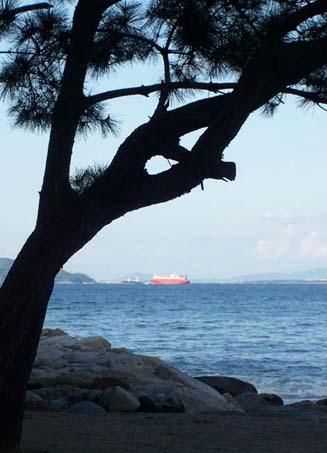 今津海岸風景 メイキング前半_f0176370_7203393.jpg
