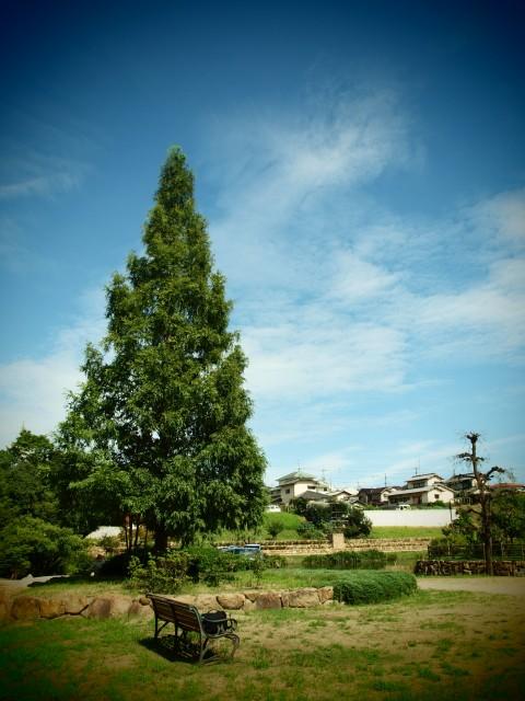 公園にて_e0074308_21214064.jpg