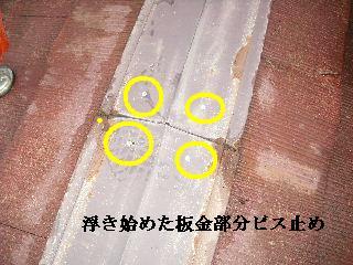 f0031037_2046583.jpg