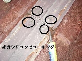 f0031037_2047618.jpg