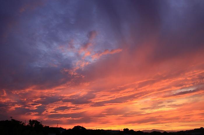 The madder sky -akane sora-_a0122544_1914274.jpg