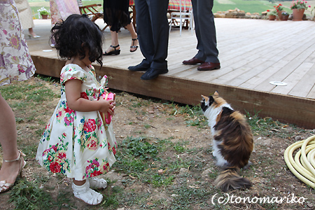 どうしてもネコちゃんと行きたい?!_c0024345_853491.jpg