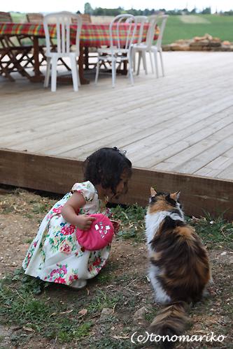 どうしてもネコちゃんと行きたい?!_c0024345_855593.jpg