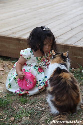 どうしてもネコちゃんと行きたい?!_c0024345_862160.jpg