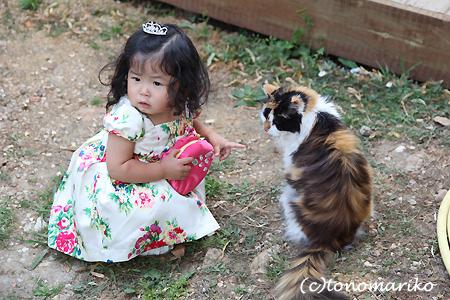 どうしてもネコちゃんと行きたい?!_c0024345_86988.jpg
