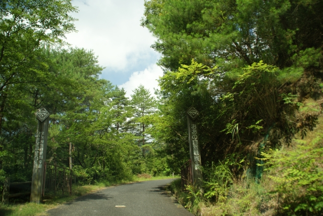 おおの自然観察の森 -夏空とハッチョウトンボ-_f0189086_2251617.jpg