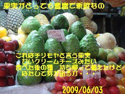 b0101991_9391058.jpg