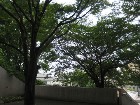 夏休み終了_b0097200_23174732.jpg