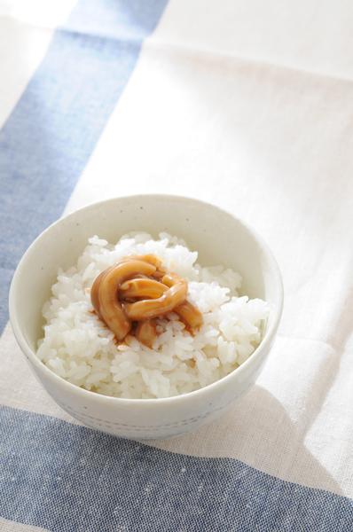 イカの塩辛と白いごはん_a0003650_901073.jpg
