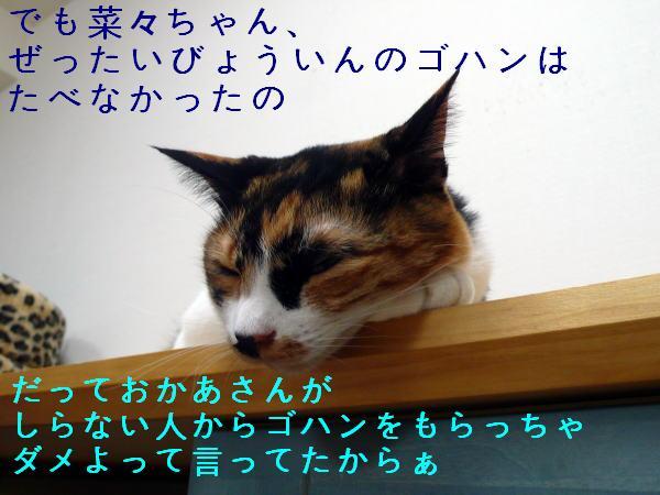 c0096628_1233679.jpg