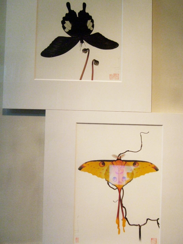 1063) af 「ステファン・エッテ写真展 『蝶の夢』」 終了・7月7日(火)~8月8日(土) _f0126829_13451575.jpg