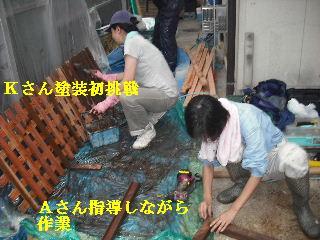 塗装工事と関連作業_f0031037_21502015.jpg
