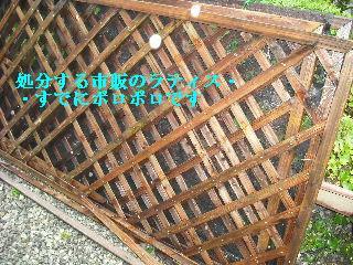 塗装工事と関連作業_f0031037_21513849.jpg