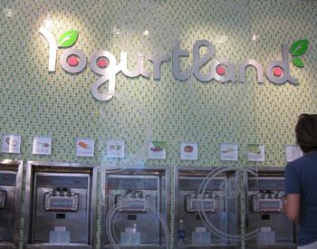 Yogurt land_c0196240_16511425.jpg